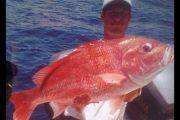 red snapper 39 in long