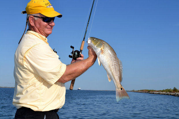 Low mississippi river allows redfish flounder to shift for Mississippi fish and game