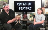 Creature Feature: GIANT toad!