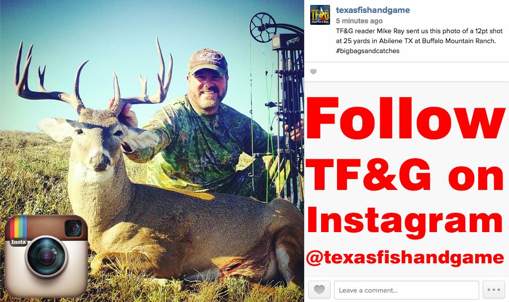 Follow Texas Fish Game On Instagram Texas Fish Game
