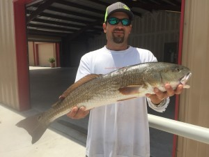 Ryan Cantu_2015 Tagged Redfish Winner #4