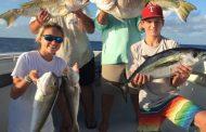 Tile Fish/Black Fin Tuna