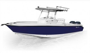 edgewater 262 cc