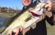 Big Pond Bass