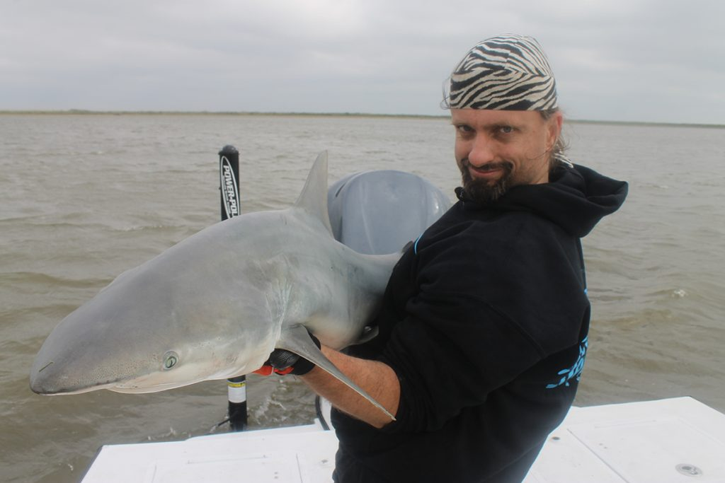 Blacktips can grow to fairly large sizes and and are extremely exciting sportfish with impressive acrobatic ability.