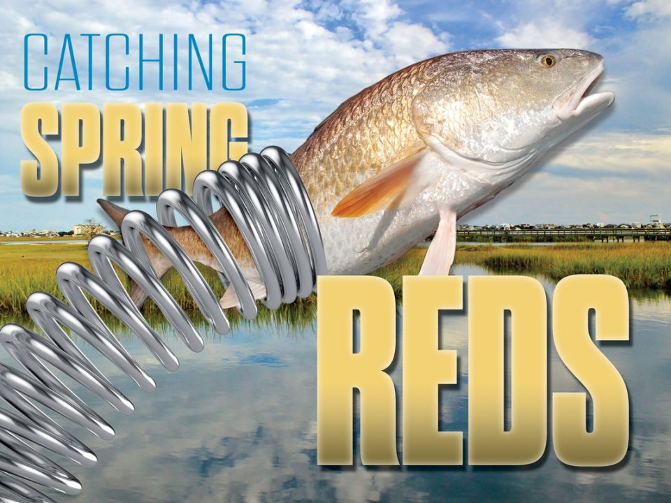 Catching Spring Redfish