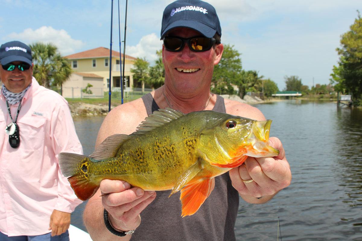 Peacock Bass In Texas Texas Fish Amp Game Magazine
