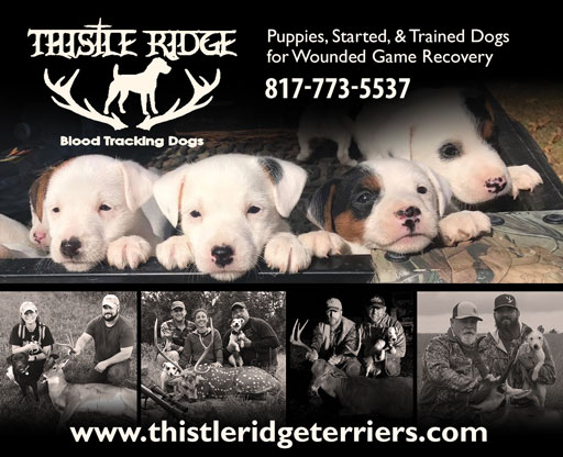 Thisle Ridge