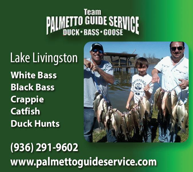 Palmetto Guide Service