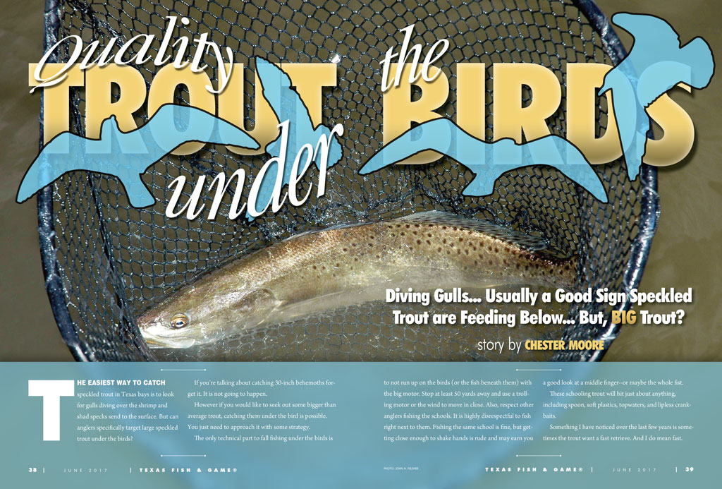 QUALITY TROUT UNDER THE BIRDS by Chester Moore - Texas Fish & Game