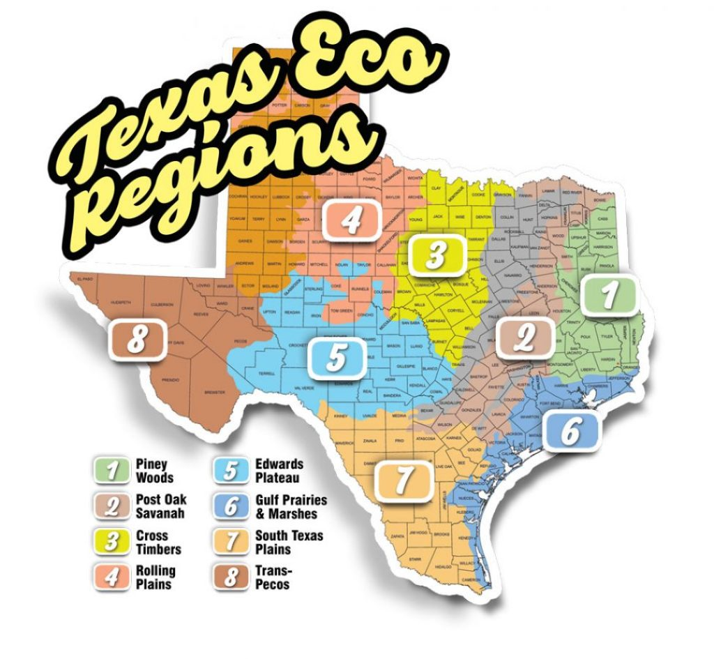 Texas Rut Map Where is the Rut?   Texas Fish & Game Magazine