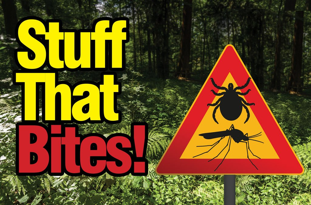 Warning! Ticks & other biters!