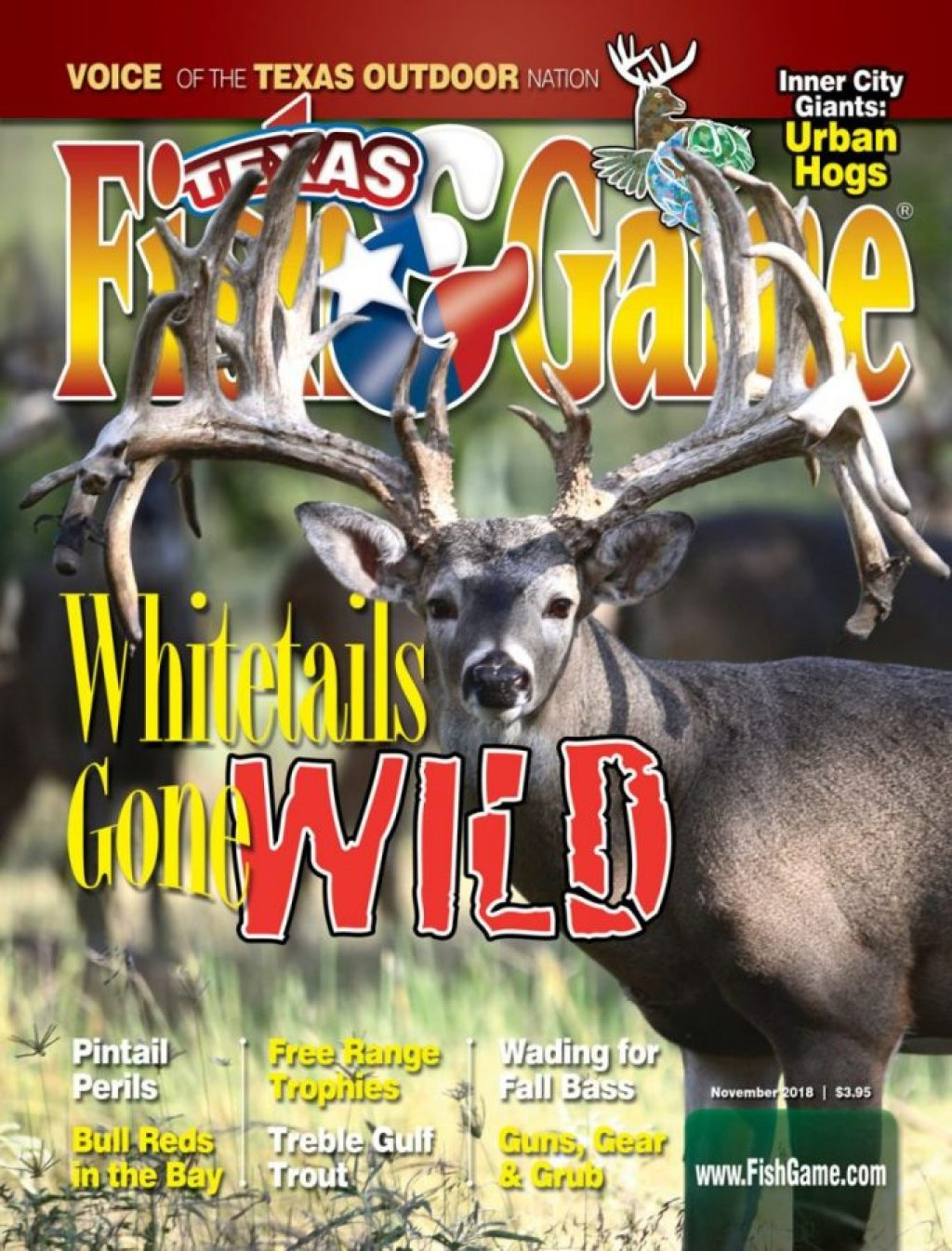 Texas Fish & Game November 2018