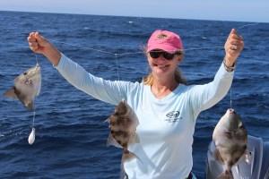 triggerfish fishing