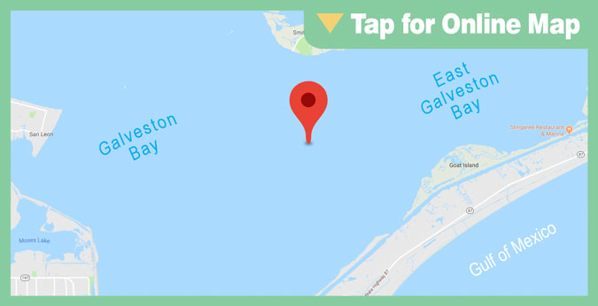 Galveston East Bay: Little Hanna's Reef