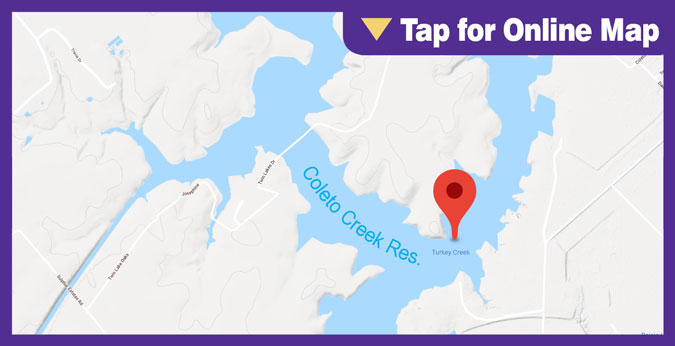 Coleto Creek Lake: Turkey Creek