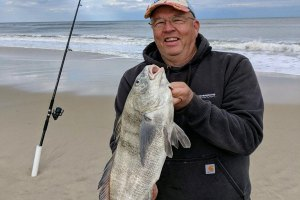 black drum fishing in the surf