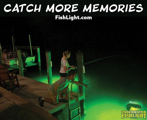 Underwater Fishlight