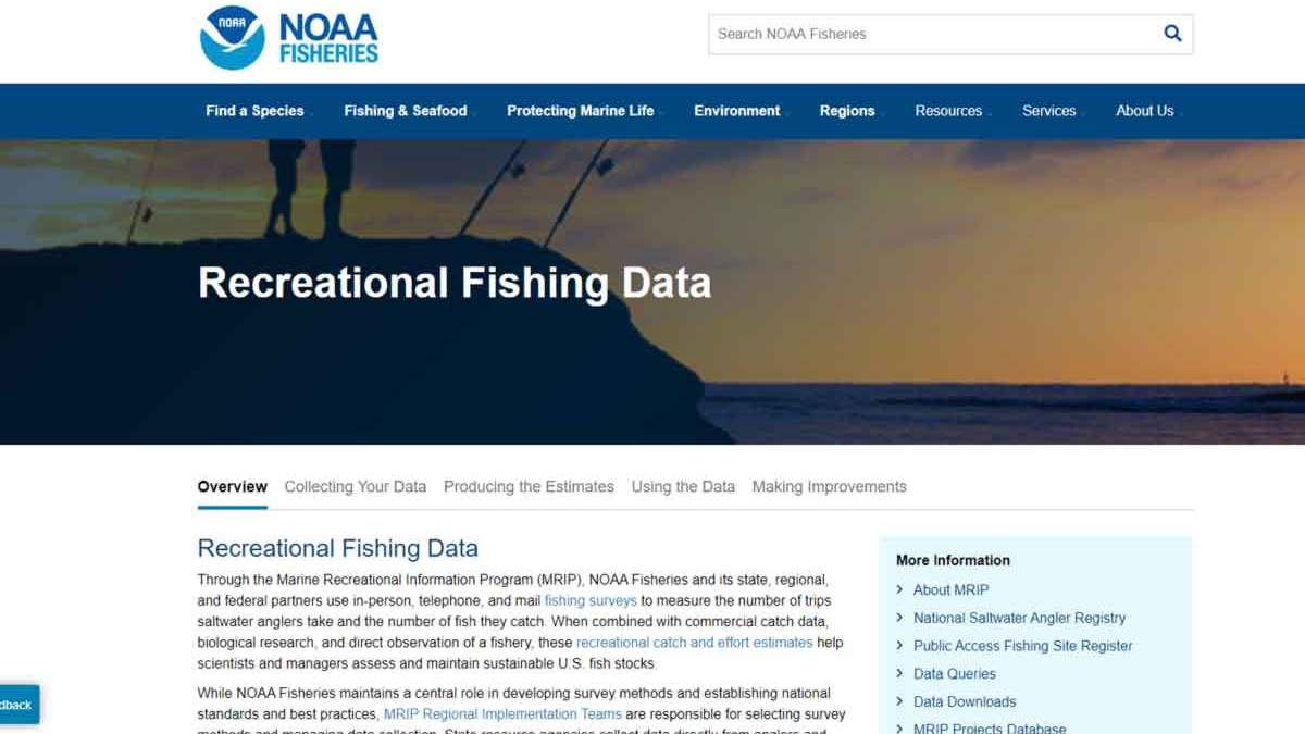 noaa counting fish