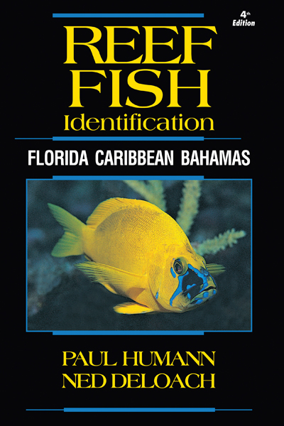 Reef Fish ID Florida Caribbean Bahamas 4th Edtiion