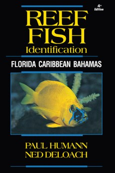 Reef Fish ID Florida Caribbean Bahamas 4th Edtiion