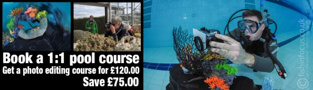 fishinfocus course discount voucher