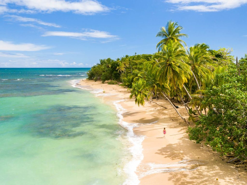 An aerial view of a beach on the Caribbean coast of Costa Rica
