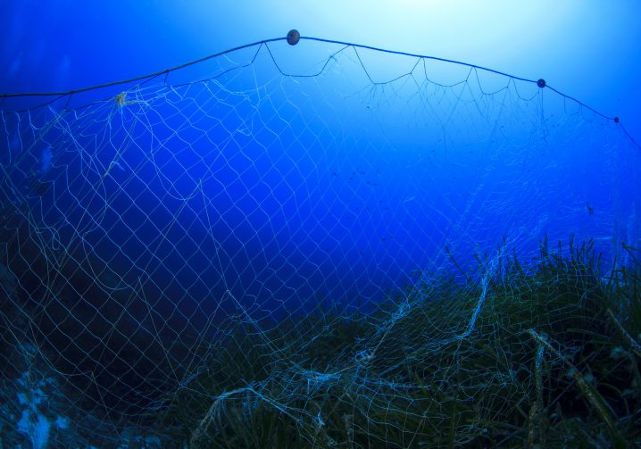 An abandoned gill net floating in the water