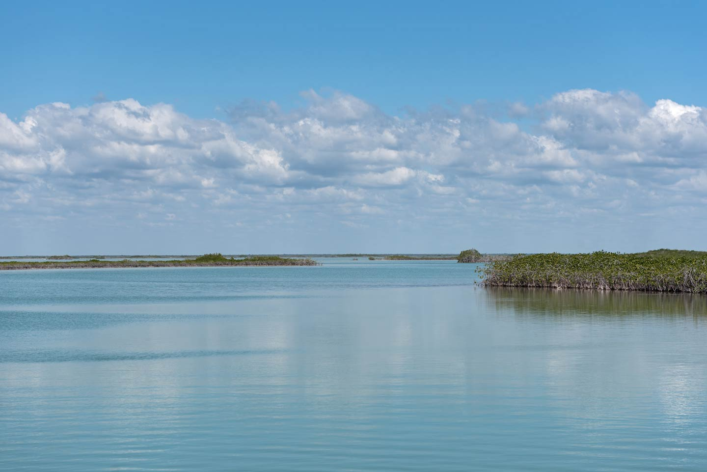 A view over Ascension Bay showing some grassy waters and a blue sky
