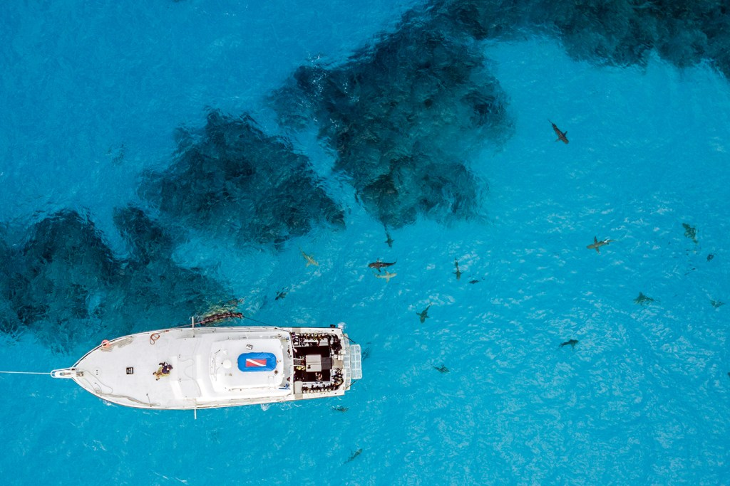 A boat anchored over a reef in the Bahamas