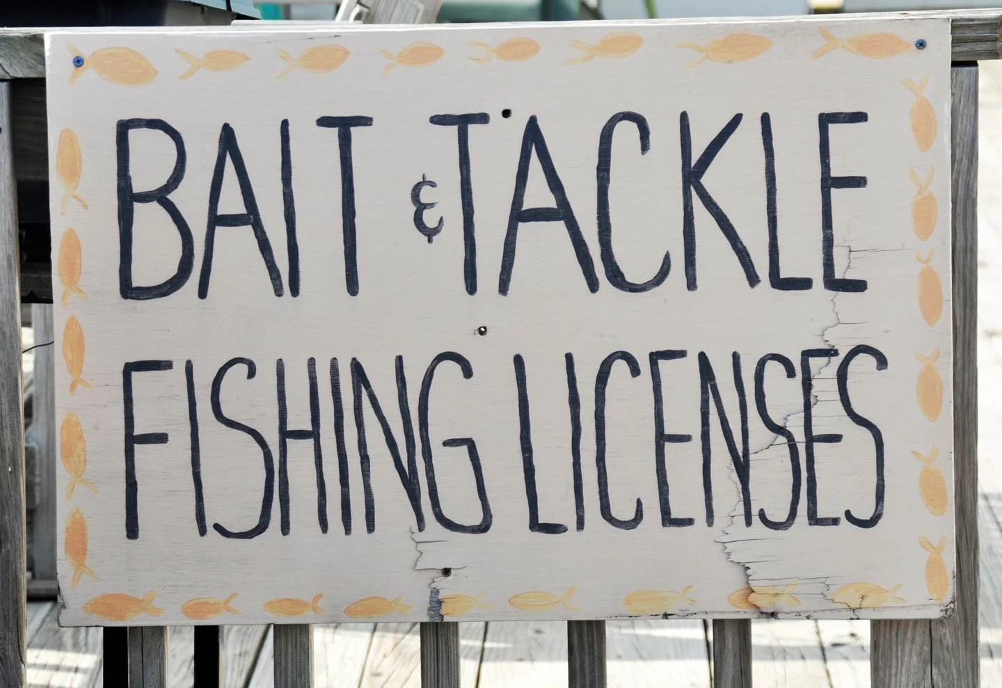 "A sign displaying the words ""bait and tackle, fishing licenses."""