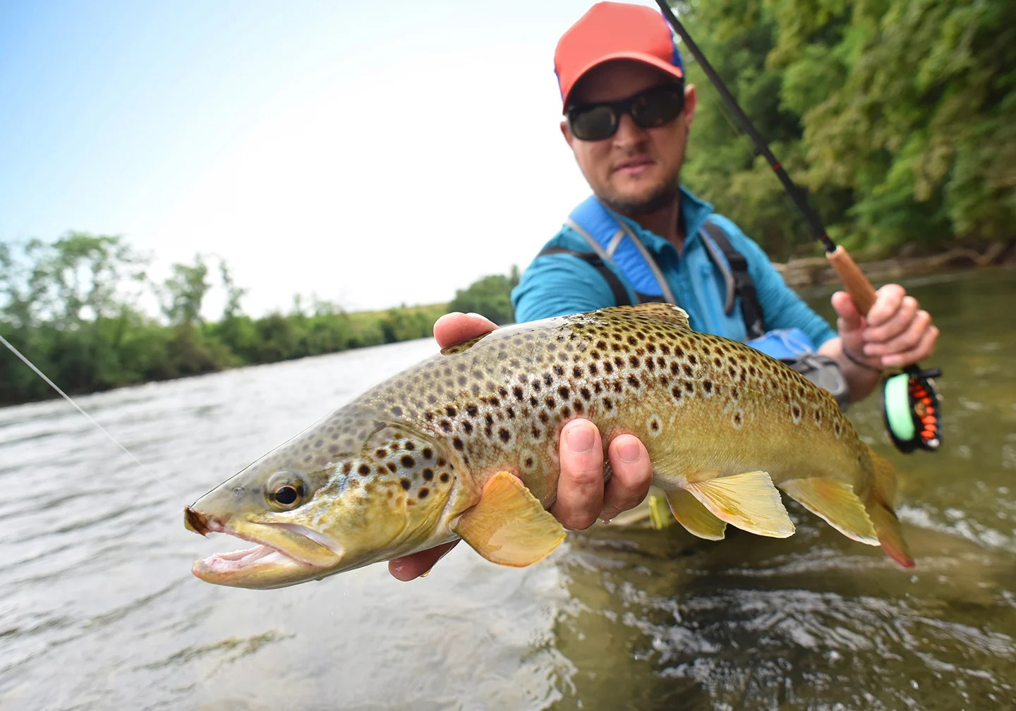 An angler crouching in a stream with a fly fishing rod in one hand and a brown trout in the other.