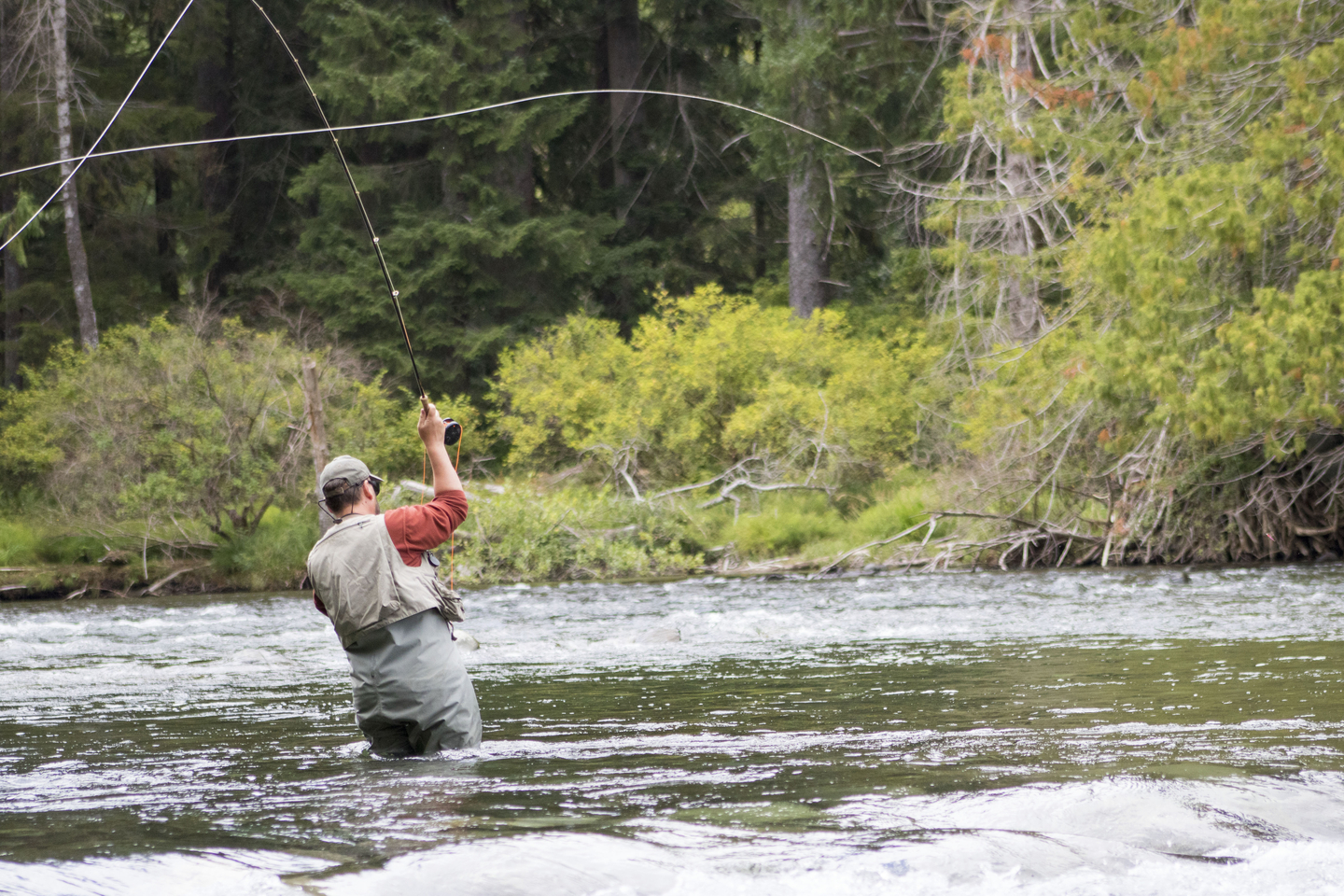 fly fisherman casting in Campbell River