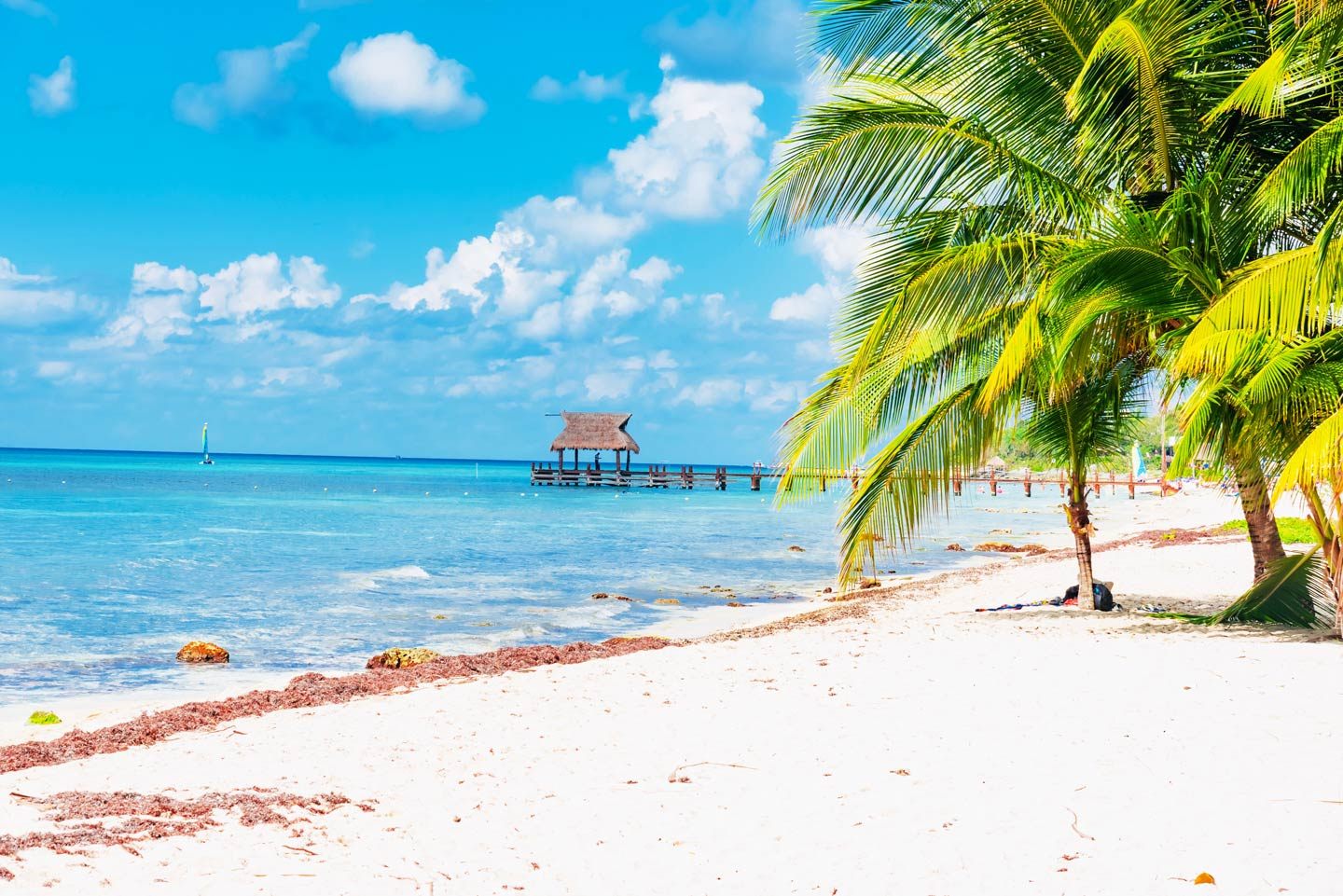 A view of the shoreline of one of Cozumel's beaches with white sands, the Caribbean, and palm trees, as well as a pier in the distance