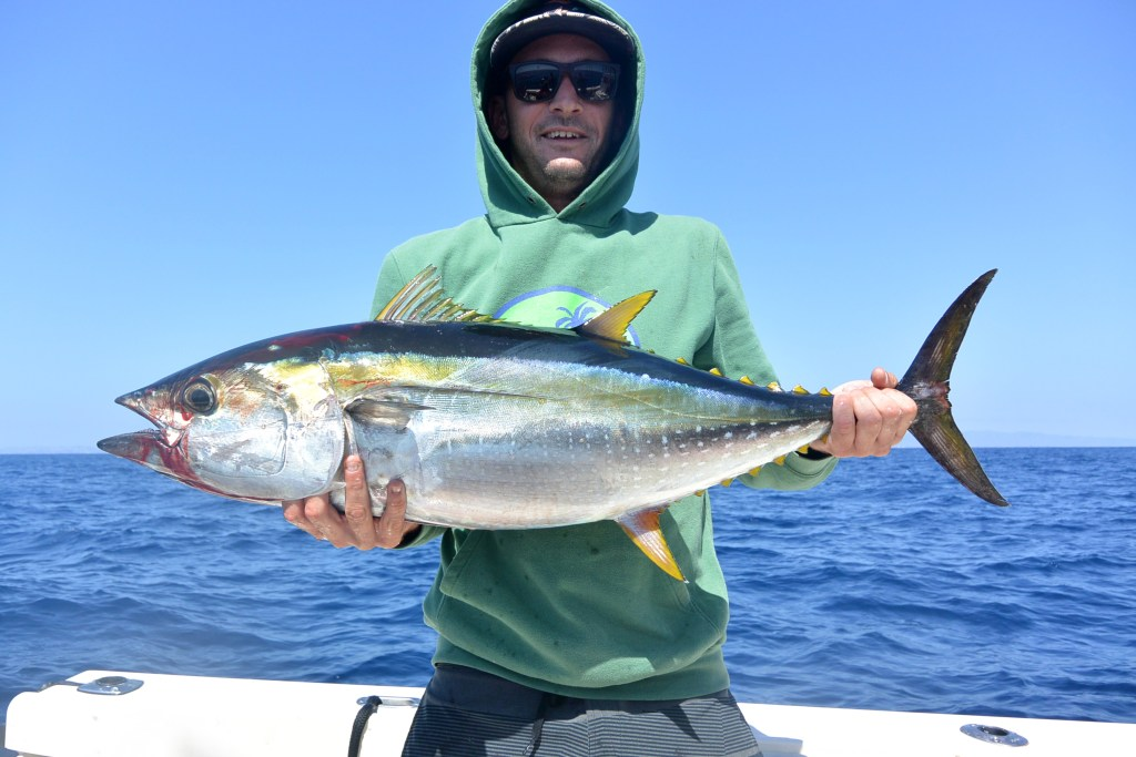 A man holding a large Yellowfin Tuna caught while Tuna fishing in Dana Point