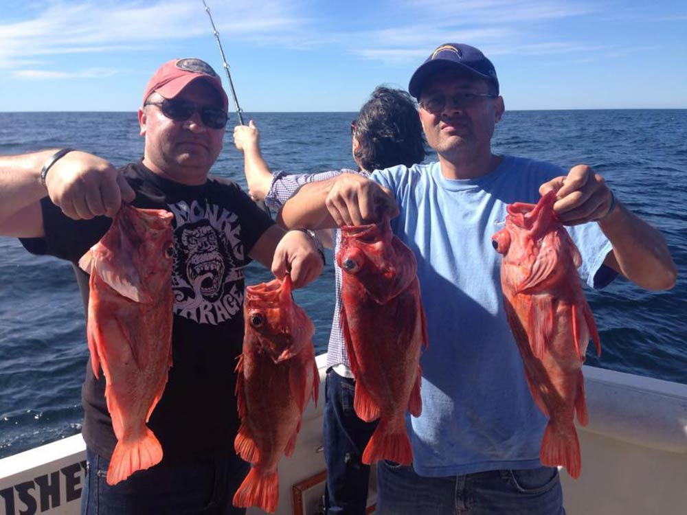 Two anglers hold four Rockfish caught inshore fishing in Ensenada