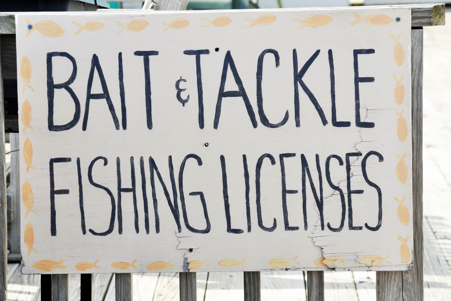 Signage at a tackle shop, advertising bait and fishing licenses.