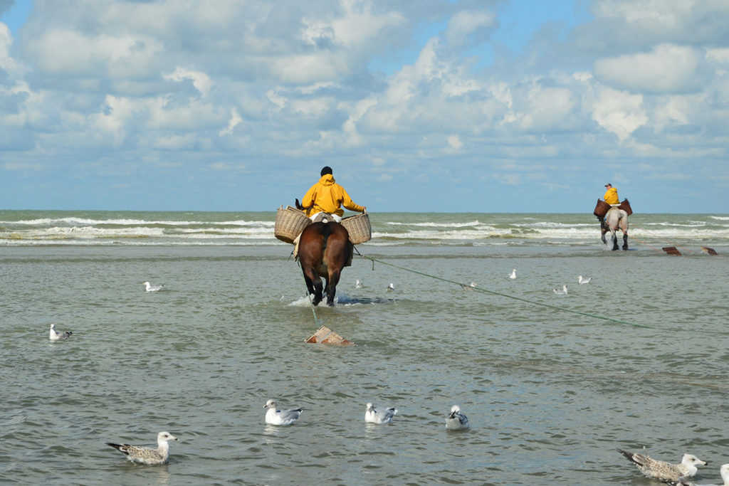 Two horseback fishermen riding into the sea in yellow overalls