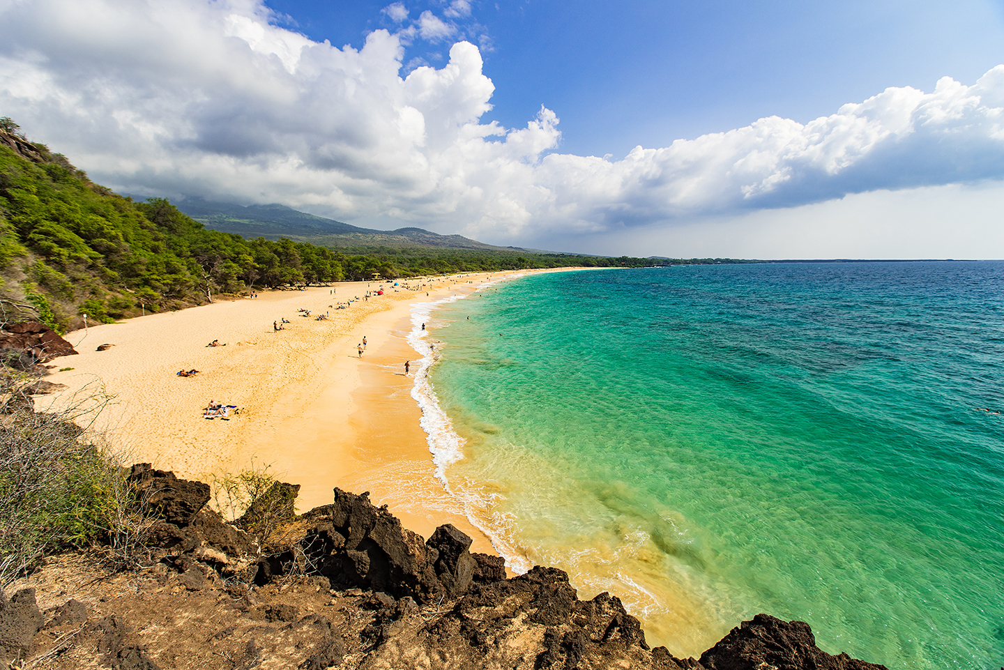A yellow sandy beach on Maui, Hawaii, with green-blue water on the right and trees on the left.