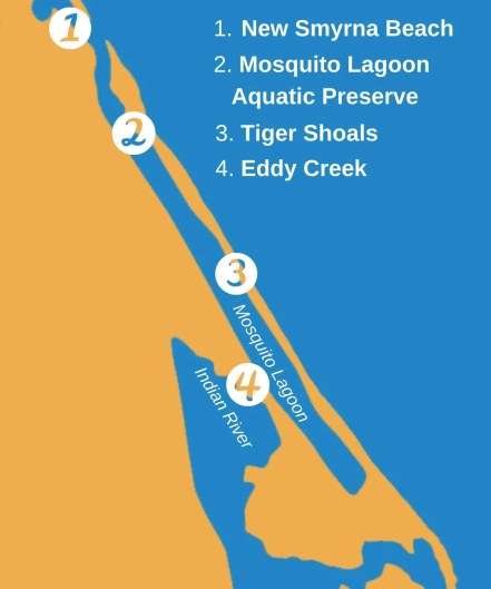 Infographic showing top spots in Mosquito Lagoon, including New Smyrna Beach, Mosquito Lagoon Aquatic Preserve, Tiger Shoals, and Eddy Creek