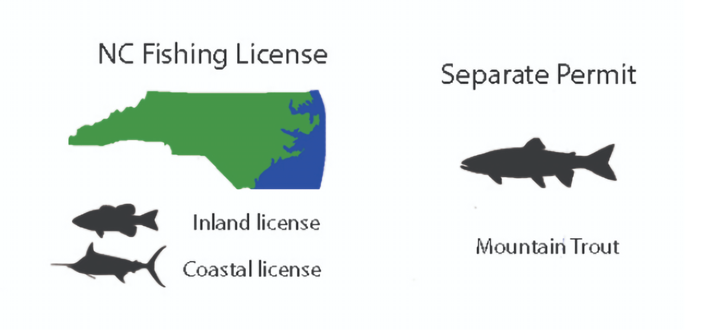 A graphic displaying which licenses are needed to fish freshwater and saltwater bodies in North Carolina and that a separate permit is needed for landlocked Trout.