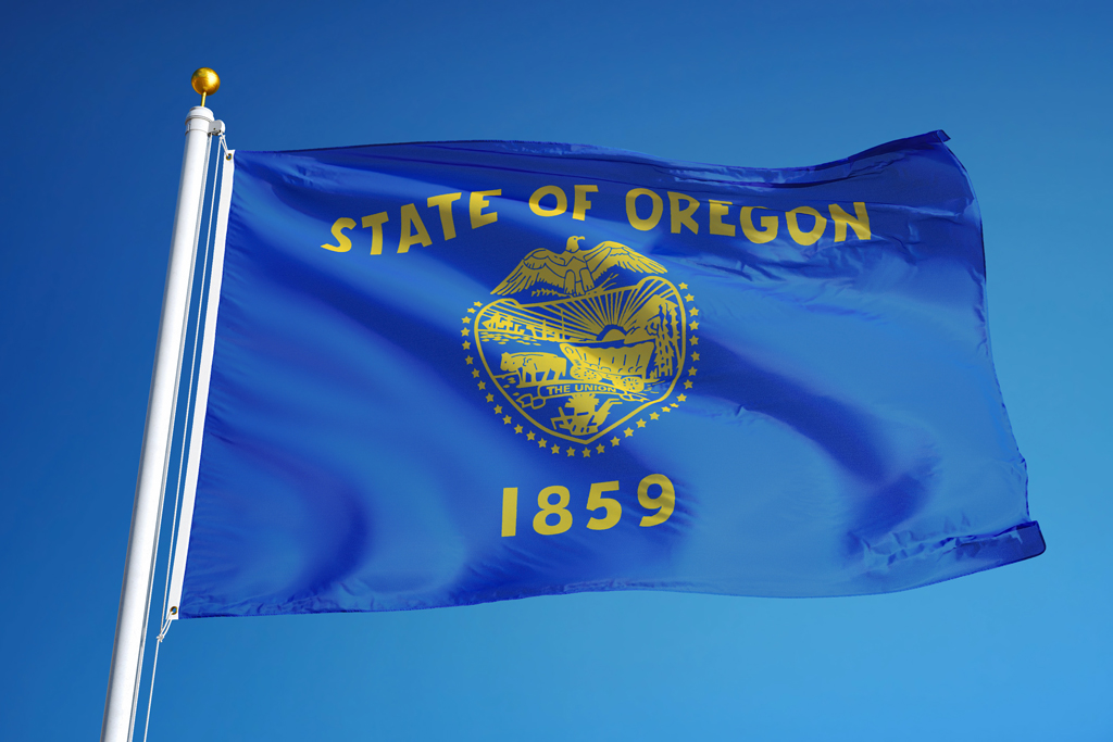 An image of the Oregon state flag with blue sky behind it