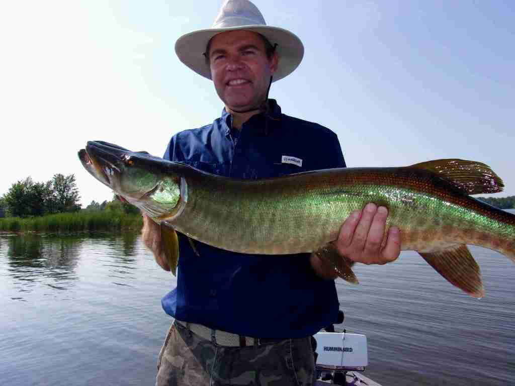 Traveling angler Paul Hale with a Musky caught on Lake Chippewa, WI
