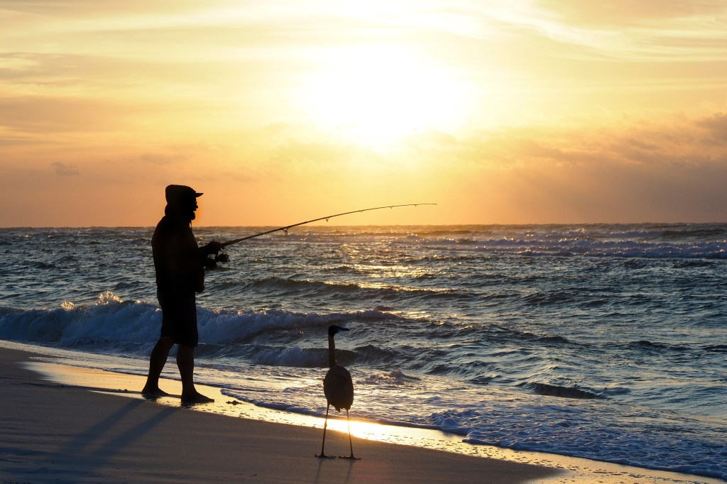 A man surf fishing on a beach at sunrise, with a large bird standing nearby