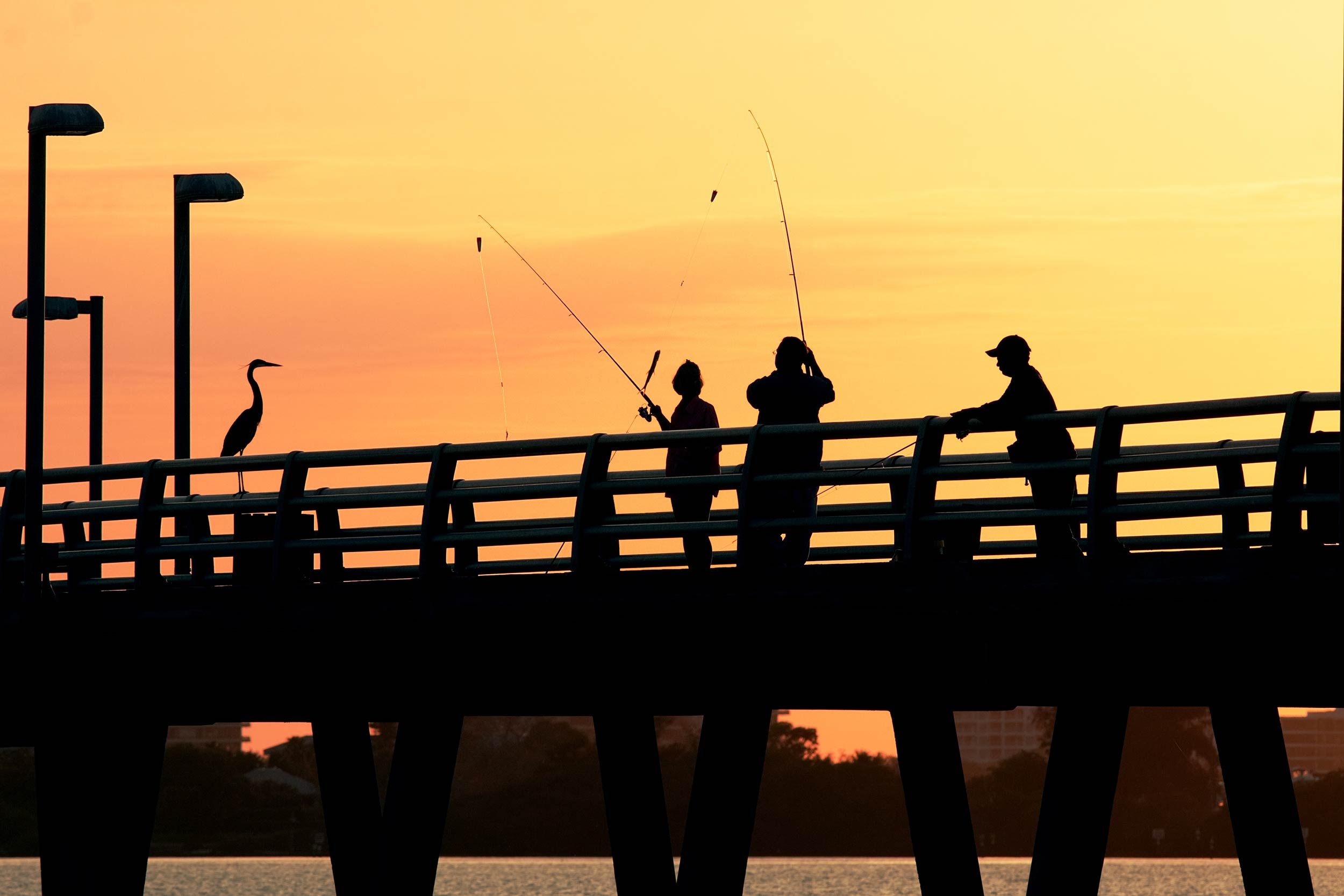 Anglers fishing from a pier at sunset