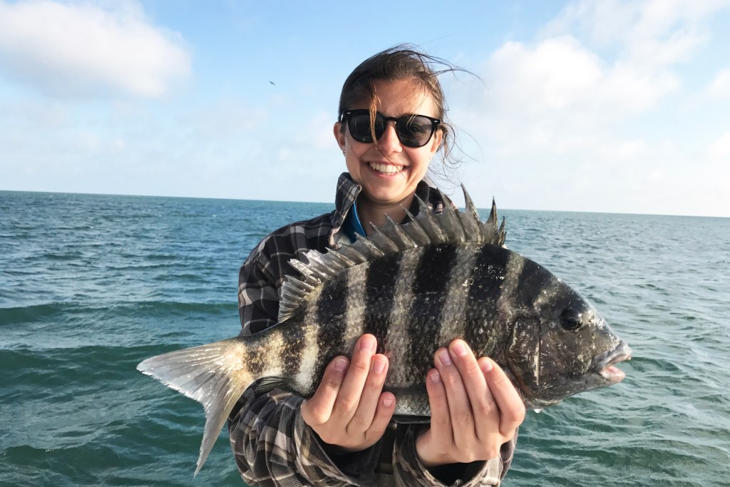 Female angler holding Sheepshead in Ponce Inlet