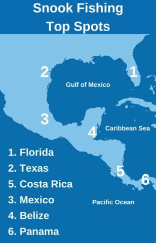 An infographic showing the top fishing spots for Snook, including Florida, Texas, Mexico, Belize, Costa Rica, and Panama