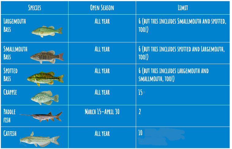 An infographic that shows the limit you can keep for each fish in Table Rock Lake.