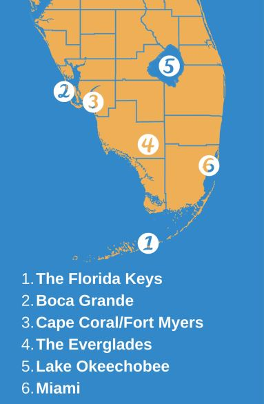 An infographic showing a map of South Florida with top fishing spots, including the Keys, Boca Grande, Fort Myers/Cape Coral, the Everglades, Lake Okeechobee, and Miami