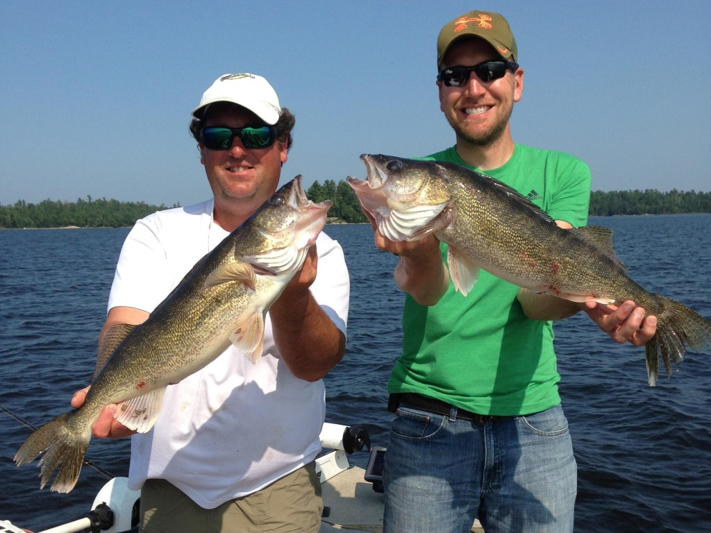 Two smiling anglers holding two large Walleye